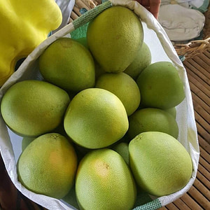 Pomelo or Suha
