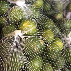 Philippine Lemon or Calamansi
